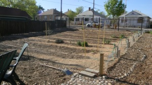 early days of the Huning-Highland Community Garden